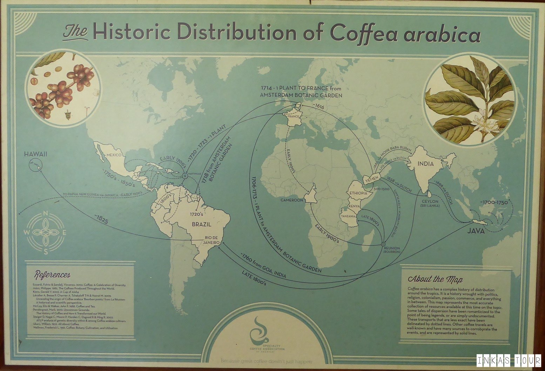 Columbia Coffee Farm Plantation