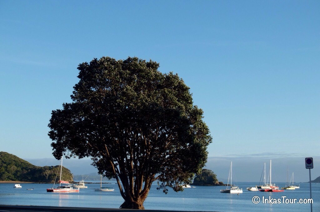 Paihia,Northland, New Zealand