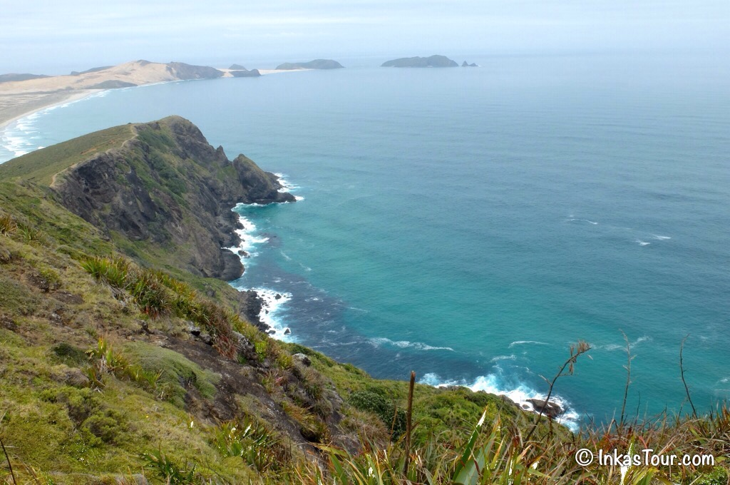 Tasman Sea, Northland, New Zealand
