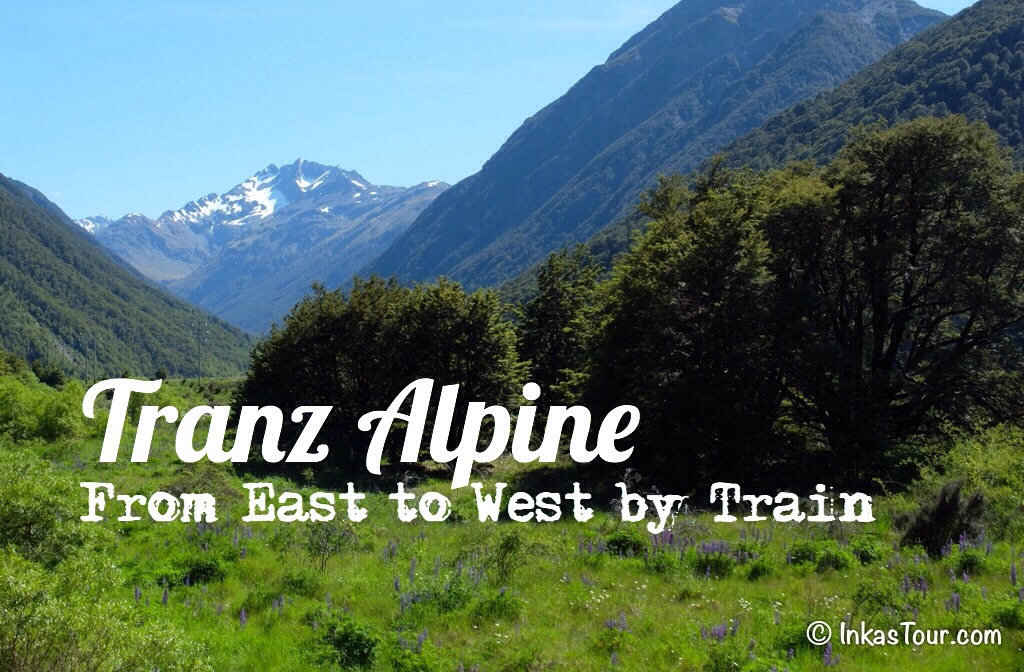 Tranz Alpine Train