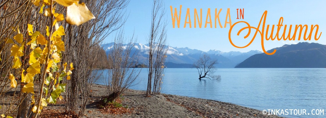 Autumn in Wanaka