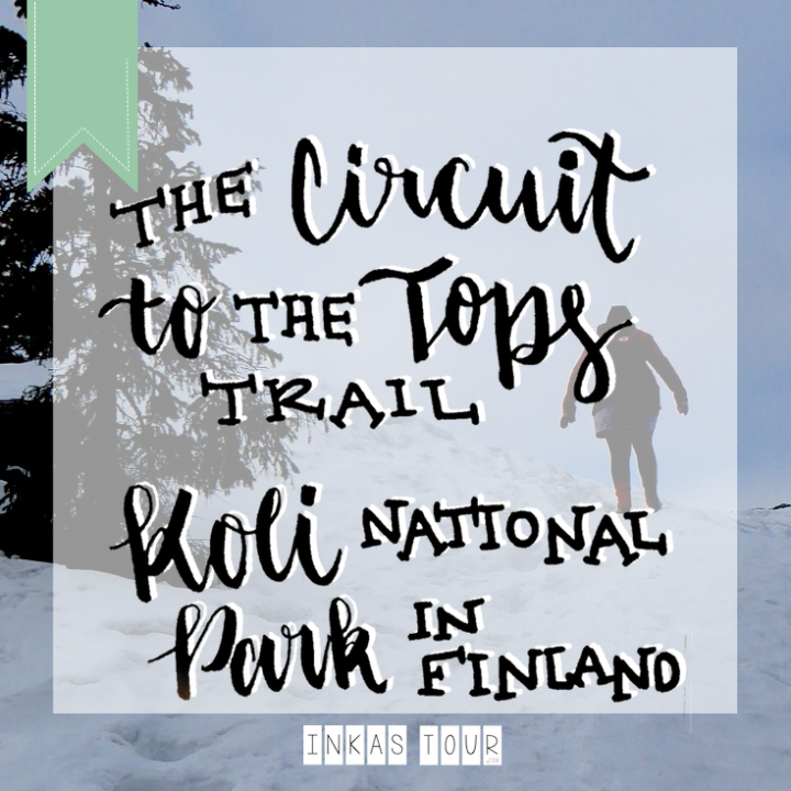 The Circuit to the Top Trail in the Koli National Park in Finland