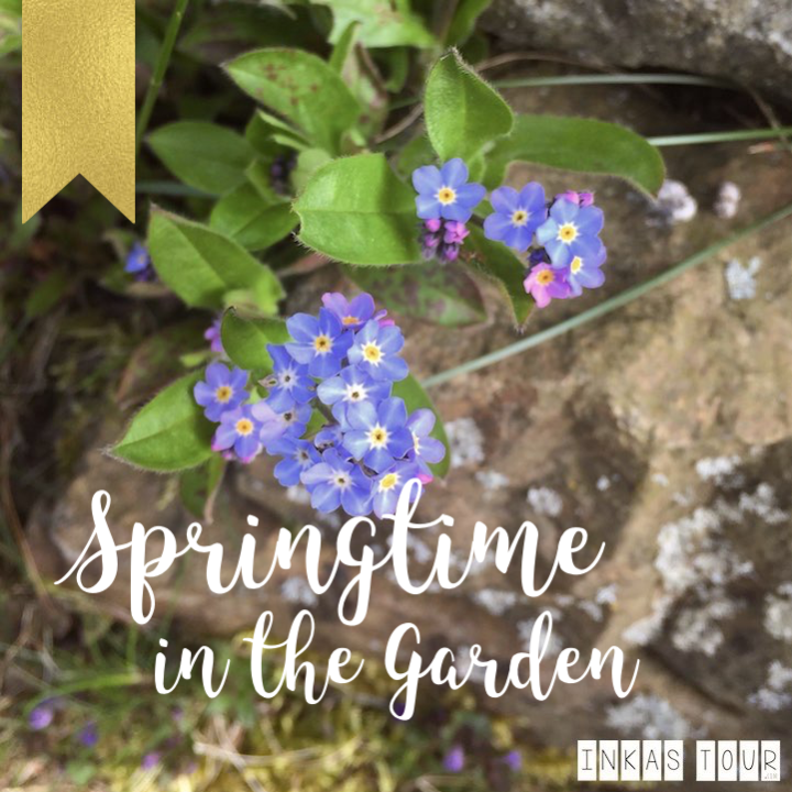 Springtime in the Garden : enjoy the small moments