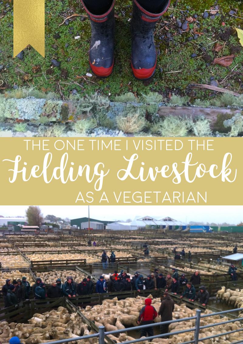Livestock Market New Zealand