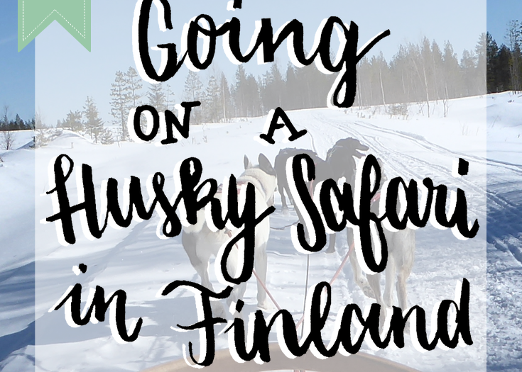 Going on a Husky Safari in Finland